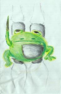 Rocket Guard Frog